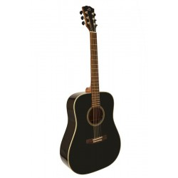 Acoustic Guitar Dowina D555 BKW