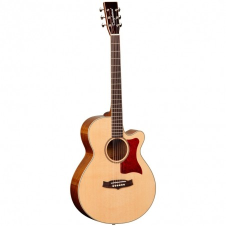 Acoustic Guitar Tanglewood TW45 EG E
