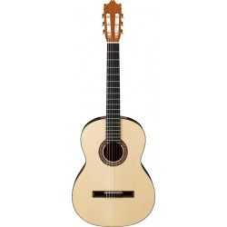 Classical Guitar Ibanez G10-NT