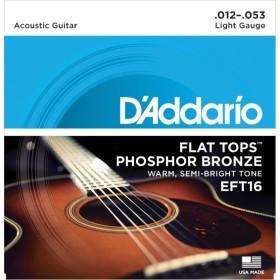 D'Addario EFT16