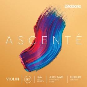 D'Addario Ascenté A310 3/4M
