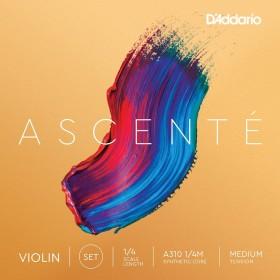 D'Addario Ascenté A310 1/4M