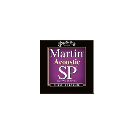 Martin MSP4050 Phosphor Bronze Custom Light